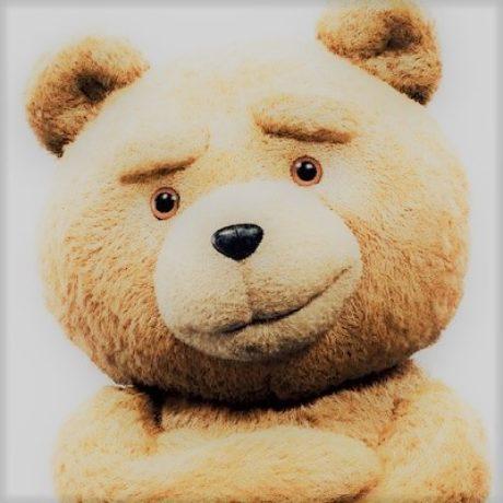 Coding bear 프로필