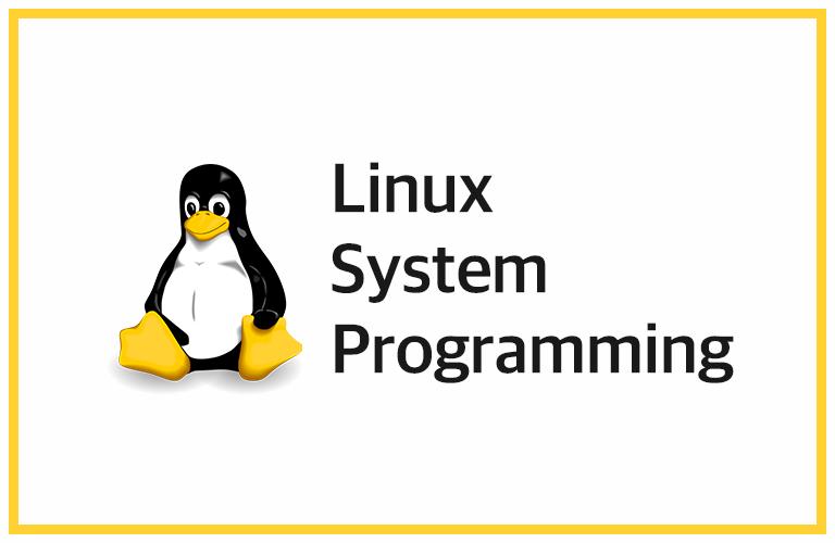 리눅스 시스템 프로그래밍 - 이론과 실습