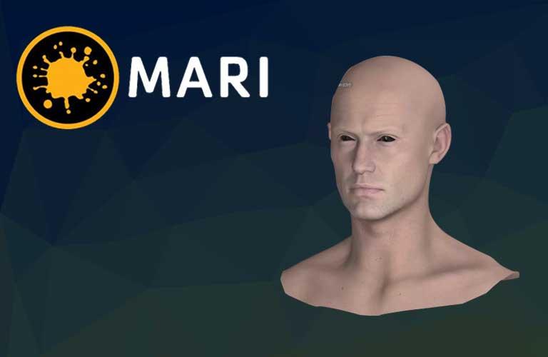 디즈니 애니메이션 스튜디오 look dev artist 에게 배우는 Mari 2.0 사용법