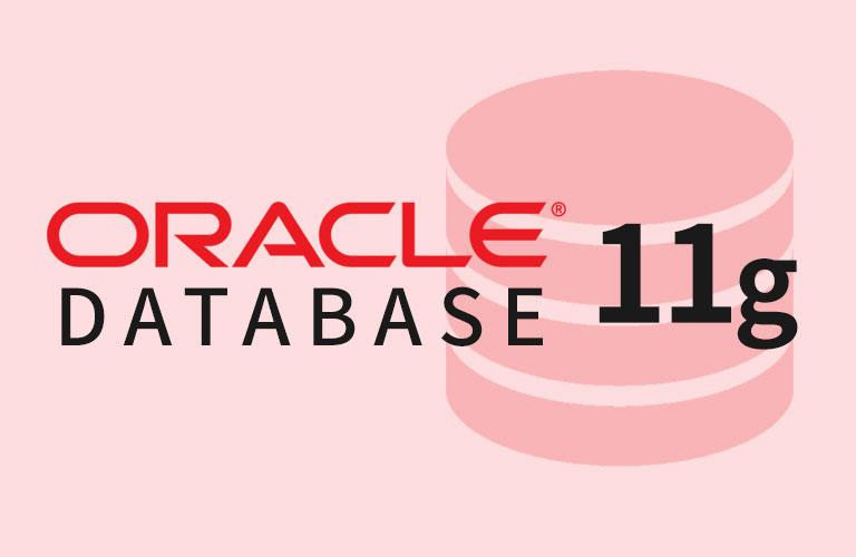 오라클 데이터베이스 11g 프로그래밍 기초 (상)