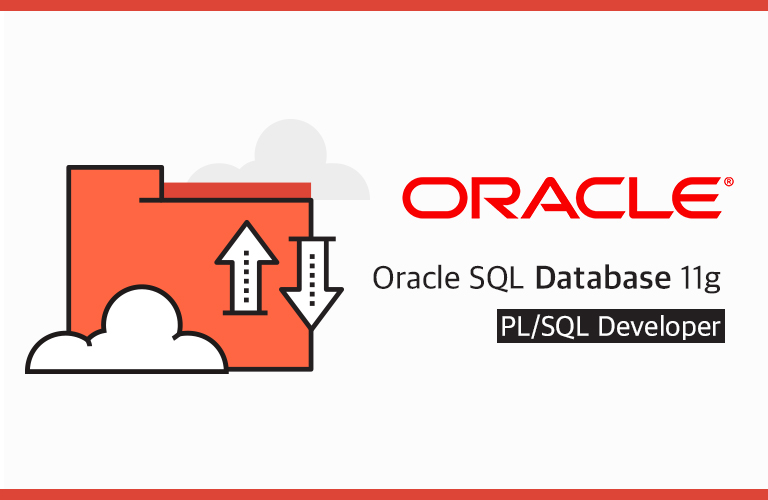 윤재성의 Oracle SQL Database 11g PL/SQL Developer